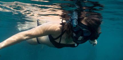 couverturearticle-vaquita-paralenz-la-meilleure-camera-de-plongee 2