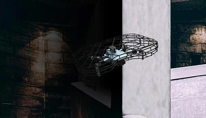 Cage de protection Mavic mini