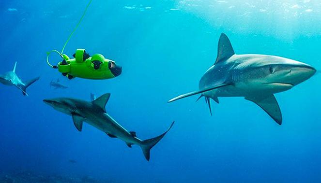 drone sous-marin qysea